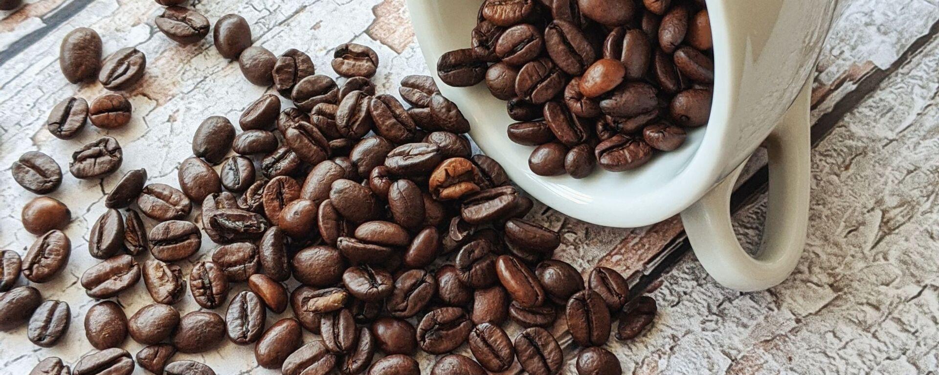 Granos de café - Sputnik Mundo, 1920, 03.08.2021