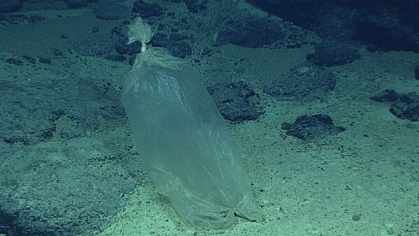 Una bolsa de plástico en el mar - Sputnik Mundo