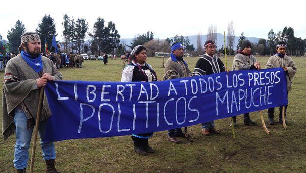 Pedido de libertad a los presos políticos mapuche - Sputnik Mundo