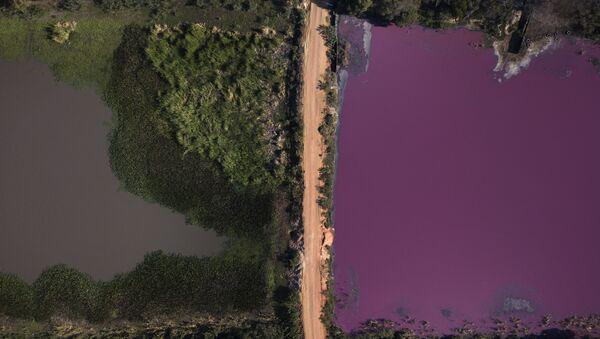 Contaminación de la laguna Cerro, Paraguay - Sputnik Mundo