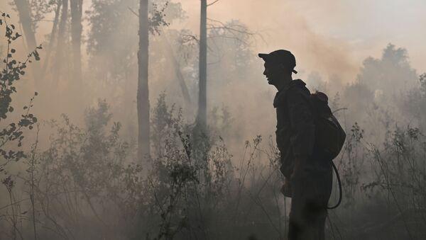 Incendios forestales (imagen referencial) - Sputnik Mundo