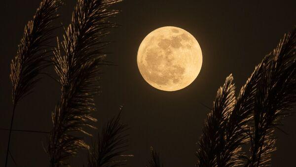 La luna llena - Sputnik Mundo