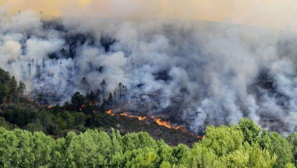 Incendio producido en Galicia en 2012 (referencial) - Sputnik Mundo