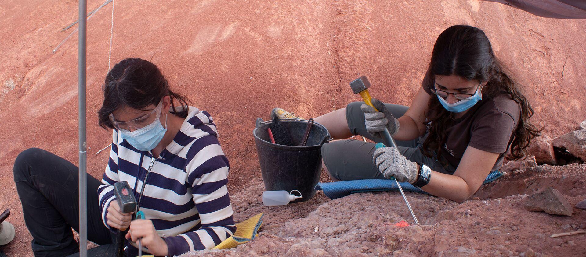 Paleontólogas trabajando en la excavación de Loarre (Huesca) - Sputnik Mundo, 1920, 24.09.2020