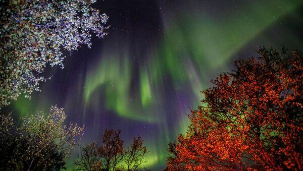 Los cielos se visten de gala: disfruta la belleza de las auroras boreales de Múrmansk  - Sputnik Mundo
