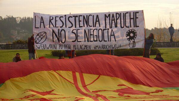 Bandera mapuche - Sputnik Mundo