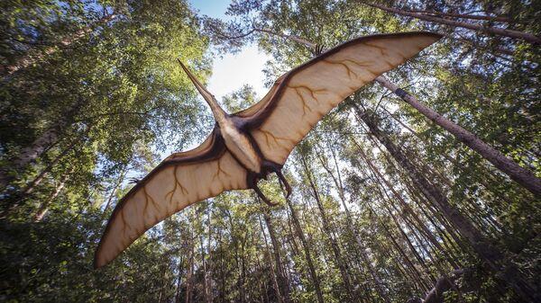 La ilustración de un pterosaurio (archivo) - Sputnik Mundo