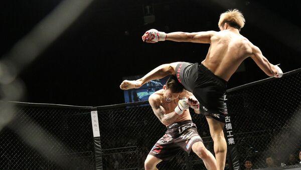 Una pelea de artes marciales mixtas (imagen referencial) - Sputnik Mundo