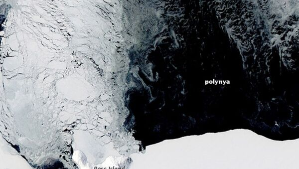 Agujero en el hielo de la Antártida - Sputnik Mundo