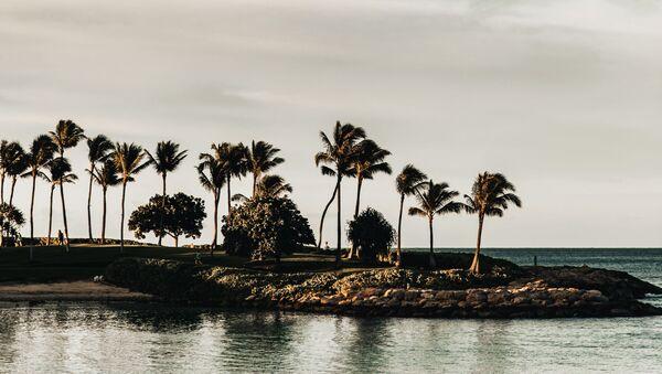 Oahu, Hawái - Sputnik Mundo