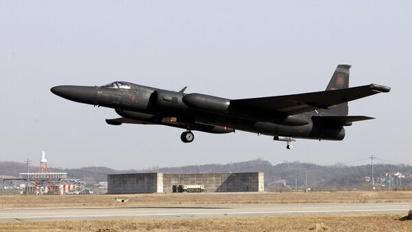 Un avión U-2 de la Fuerza Aérea de EEUU (archivo) - Sputnik Mundo