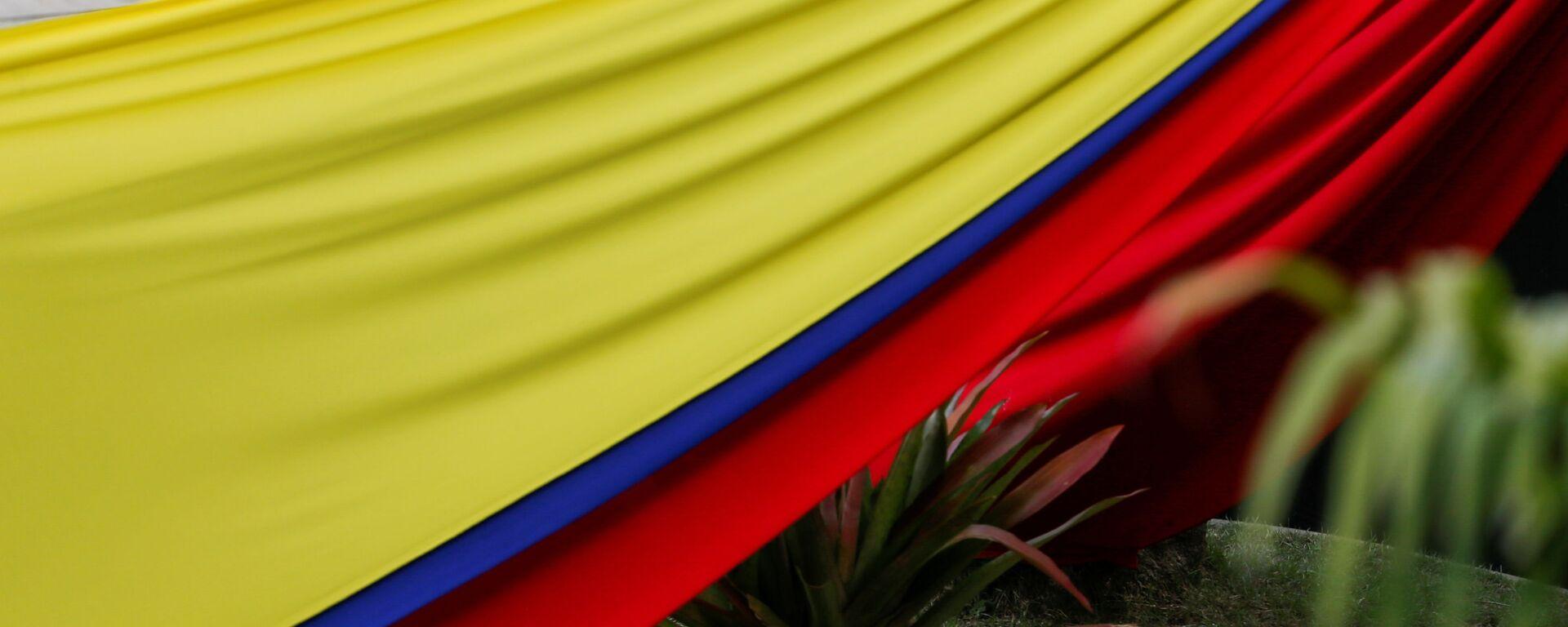Bandera de Venezuela - Sputnik Mundo, 1920, 28.01.2021