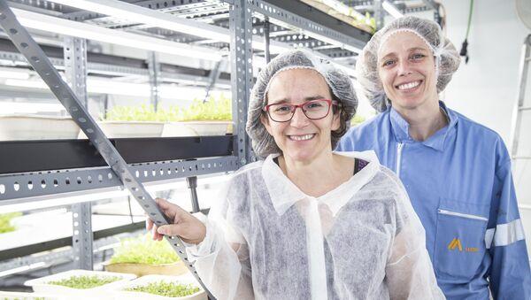 Ana y su prima Inés decidieron crear su startup Ekonoke hace cinco años y permitir a las personas cosechar su propio huerto en casa - Sputnik Mundo