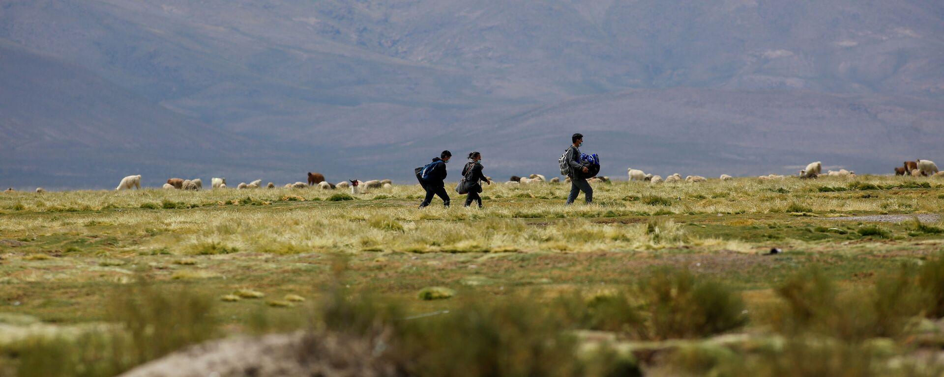 Migrantes en la frontera entre Chile y Bolivia - Sputnik Mundo, 1920, 16.02.2021