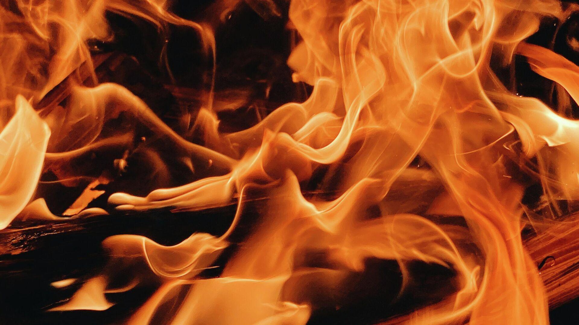Fuego (imagen referencial) - Sputnik Mundo, 1920, 11.02.2021