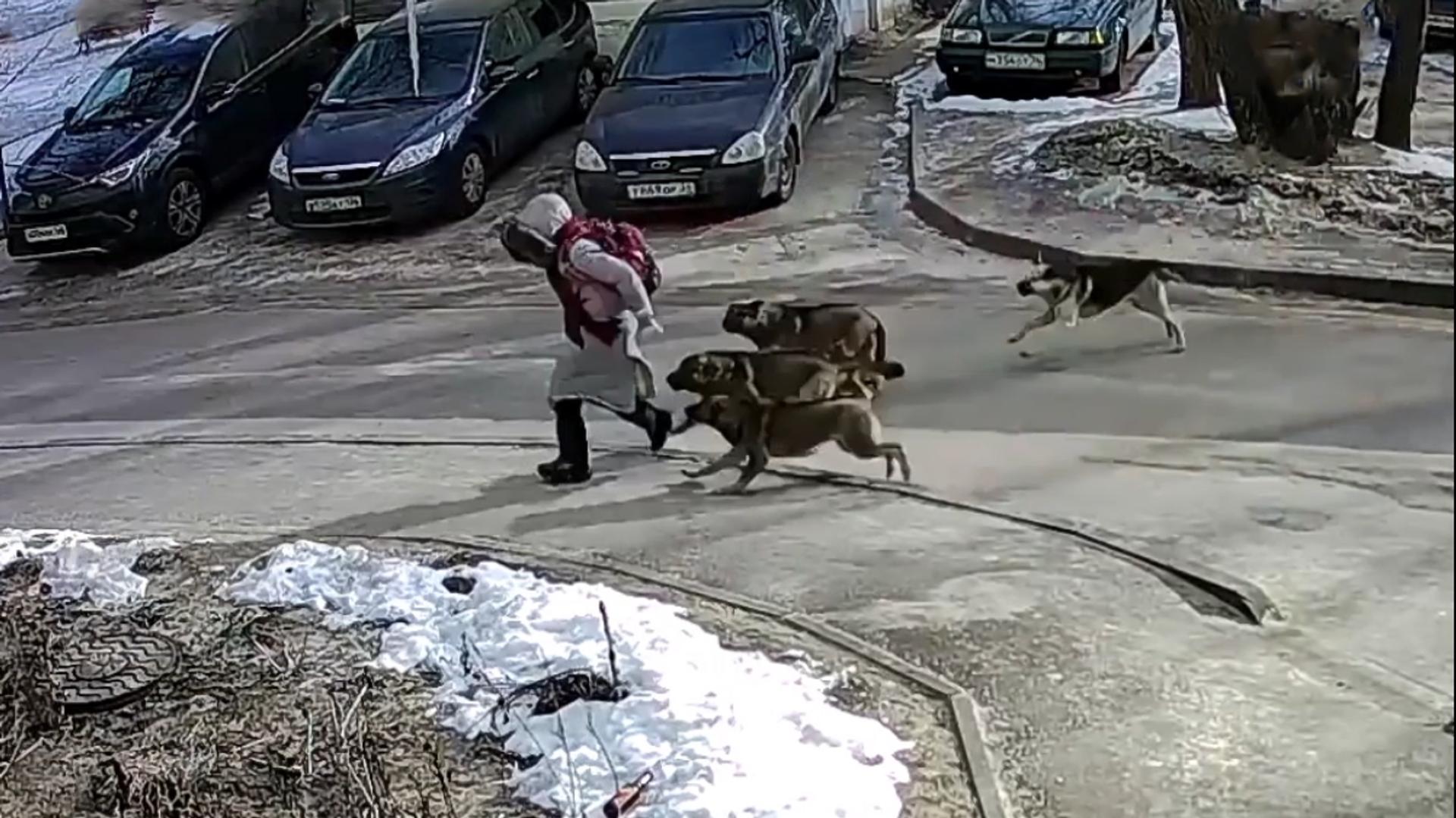 Unos perros persiguen a una niña - Sputnik Mundo, 1920, 11.02.2021
