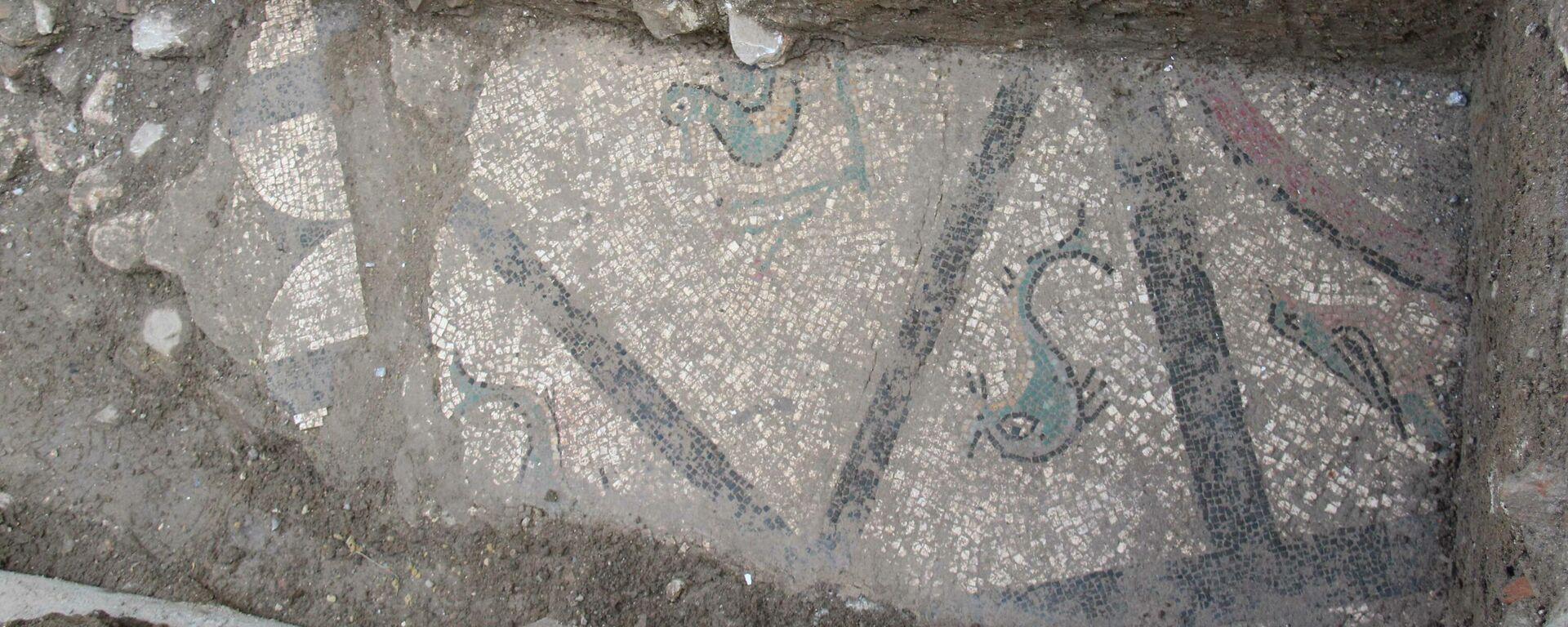 Mosaico romano hallado en 2021 en Cártama - Sputnik Mundo, 1920, 17.02.2021