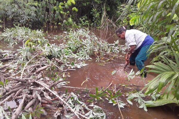 Inundaciones en Bolivia - Sputnik Mundo