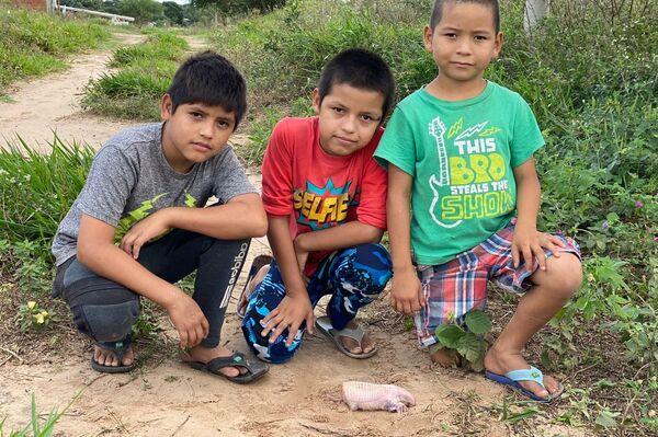 Niños junto a un ejemplar de 'culotapau' muerto - Sputnik Mundo