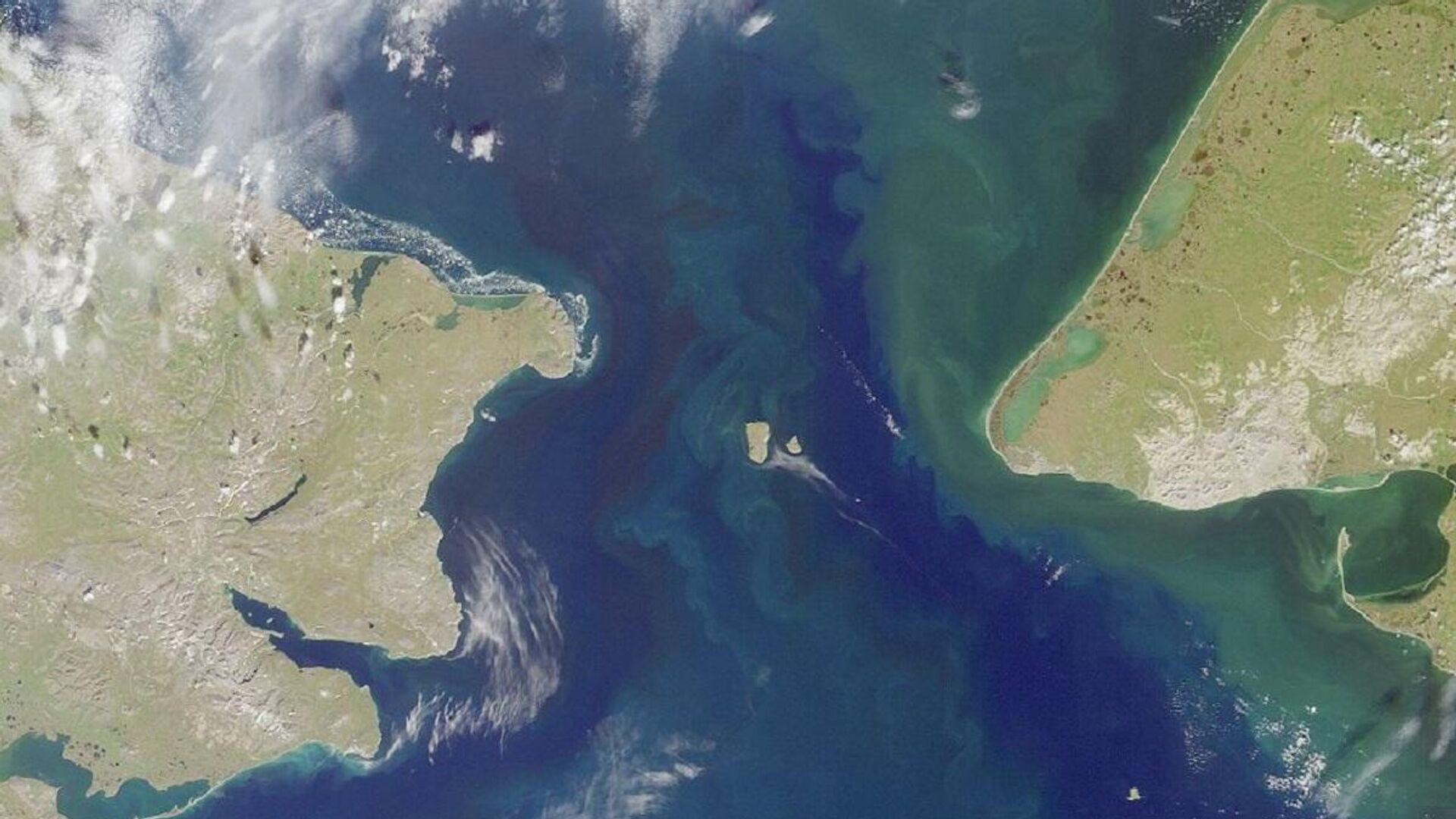 El estrecho de Bering que separa Siberia de Alaska en el Pacífico Norte - Sputnik Mundo, 1920, 10.03.2021