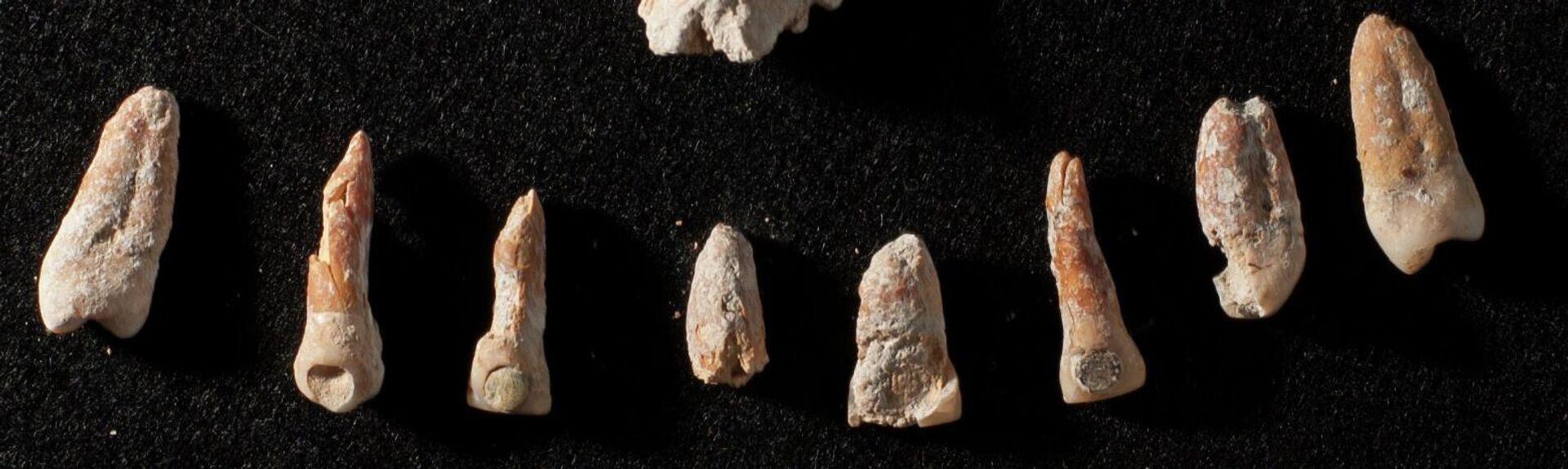 Los dientes con las incrustaciones de jade y pirita  - Sputnik Mundo, 1920, 17.03.2021