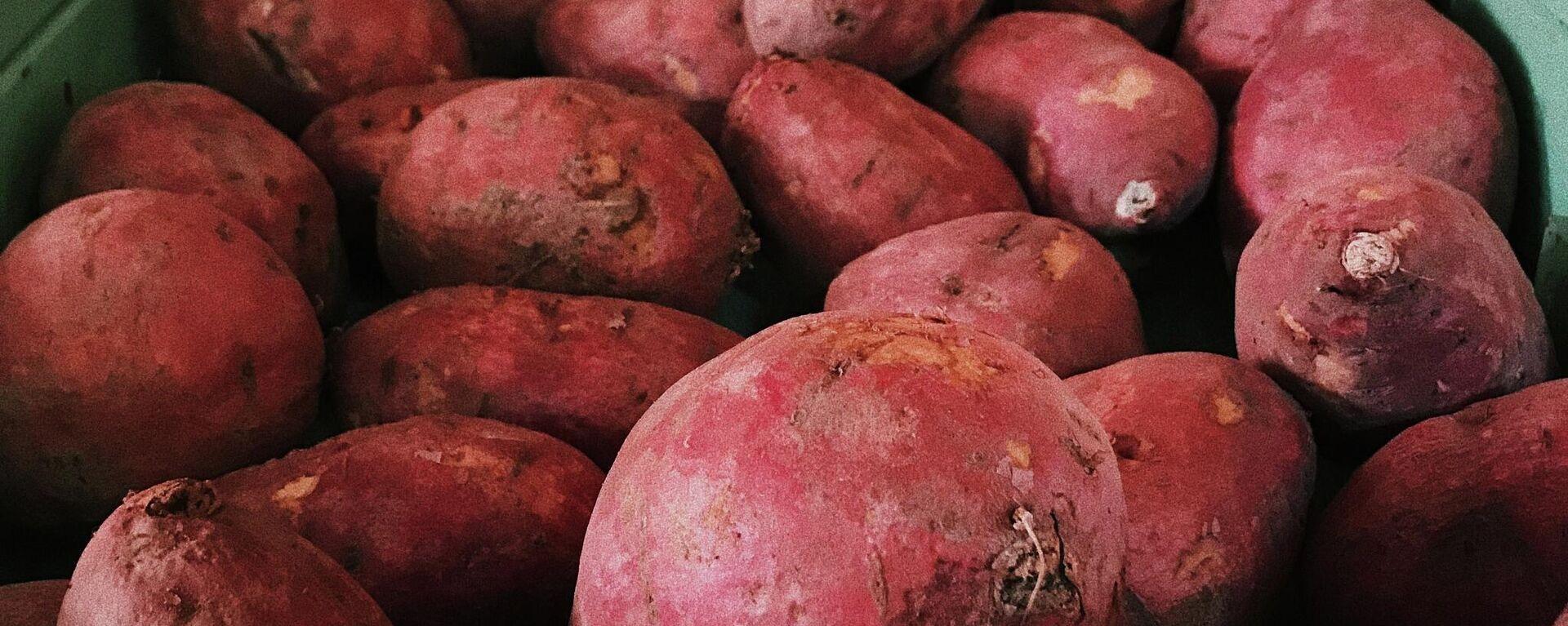 Unas batatas - Sputnik Mundo, 1920, 11.08.2021