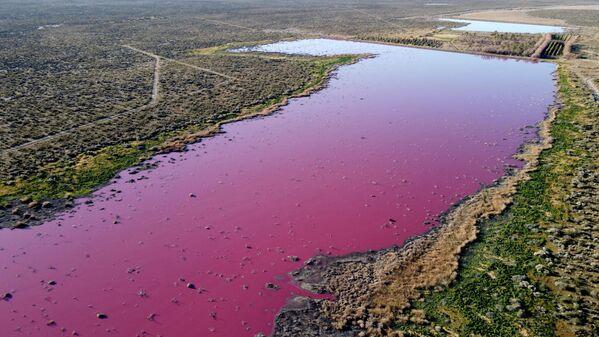 Vista aérea de una laguna que se volvió rosa debido a un químico utilizado para ayudar a la conservación del camarón en las fábricas de pesca cercanas a Trelew, en la provincia patagónica de Chubut (Argentina). - Sputnik Mundo