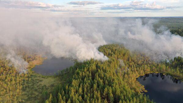 Las altas temperaturas del verano boreal también han causado estragos en el noreste de Rusia. En la foto: los incendios forestales se devoran a los frondosos bosques siberianos, en Karelia, Rusia. - Sputnik Mundo