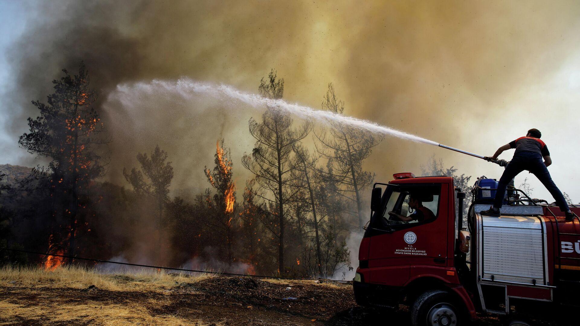 Incendios forestales en Turquía - Sputnik Mundo, 1920, 02.08.2021