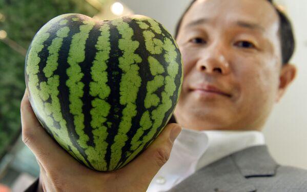 El gerente de una tienda de frutas de lujo en Tokio (Japón) muestra una sandía en forma de corazón. - Sputnik Mundo