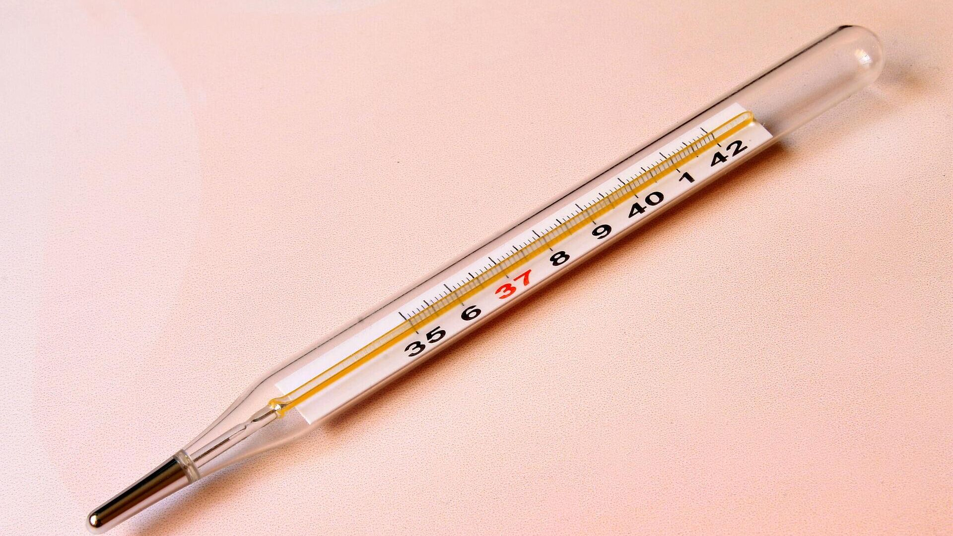 Un termómetro - Sputnik Mundo, 1920, 29.08.2021