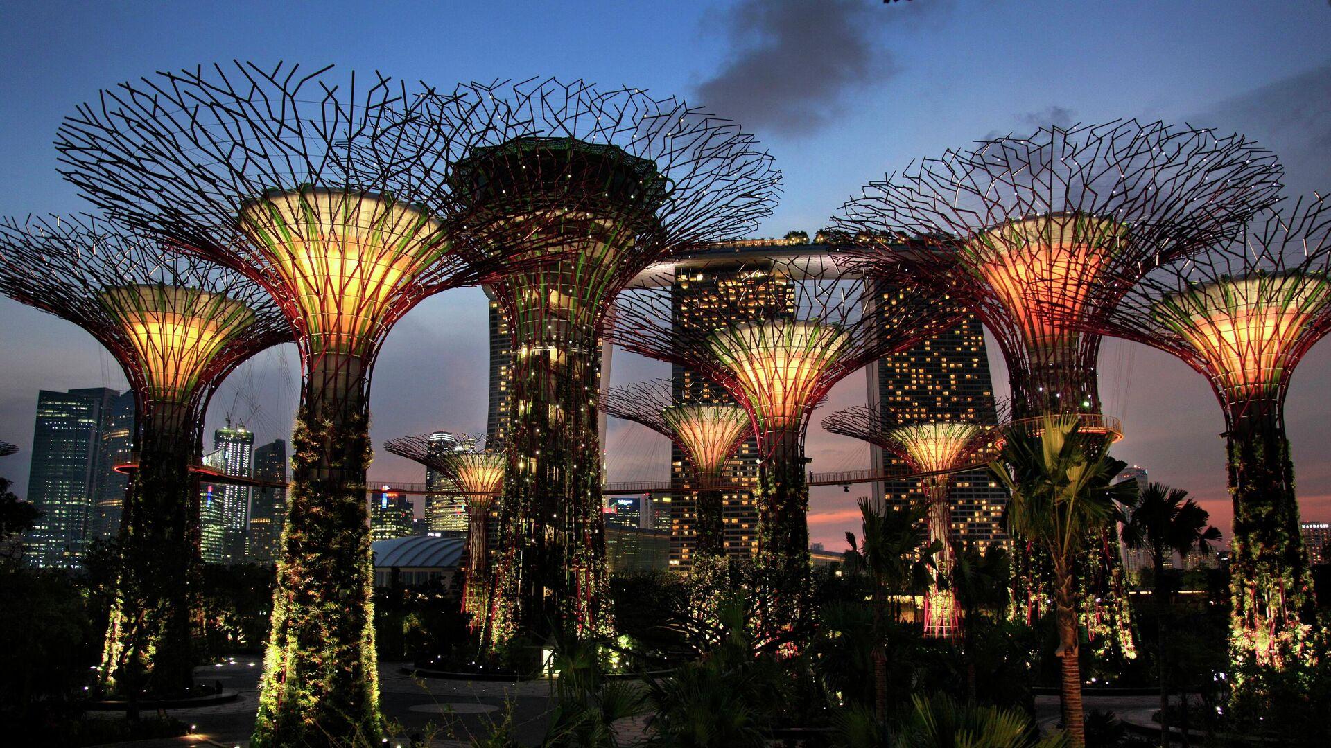 Un parque en Singapur - Sputnik Mundo, 1920, 09.08.2021
