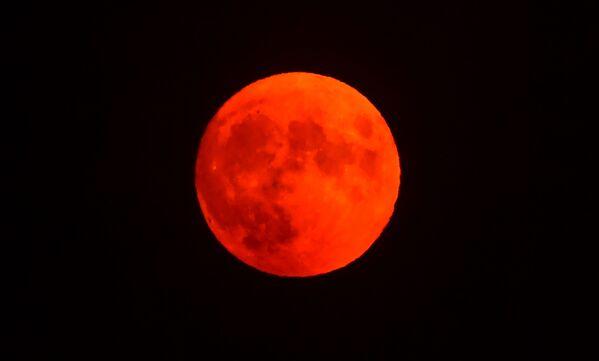 La próxima luna azul estacional como la de ahora se verá en el cielo solamente el 19 de agosto de 2024.En la foto: la luna de esturión en el cielo californiano, en Estados Unidos. - Sputnik Mundo