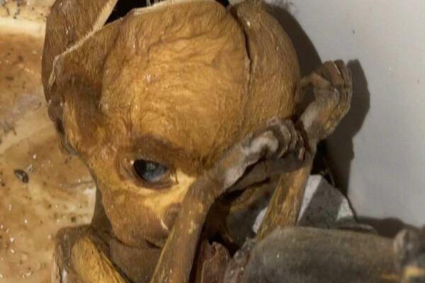 Restos humanos en el interior del antiguo hospital comarcal de La Línea de la Concepción (Cádiz) - Sputnik Mundo