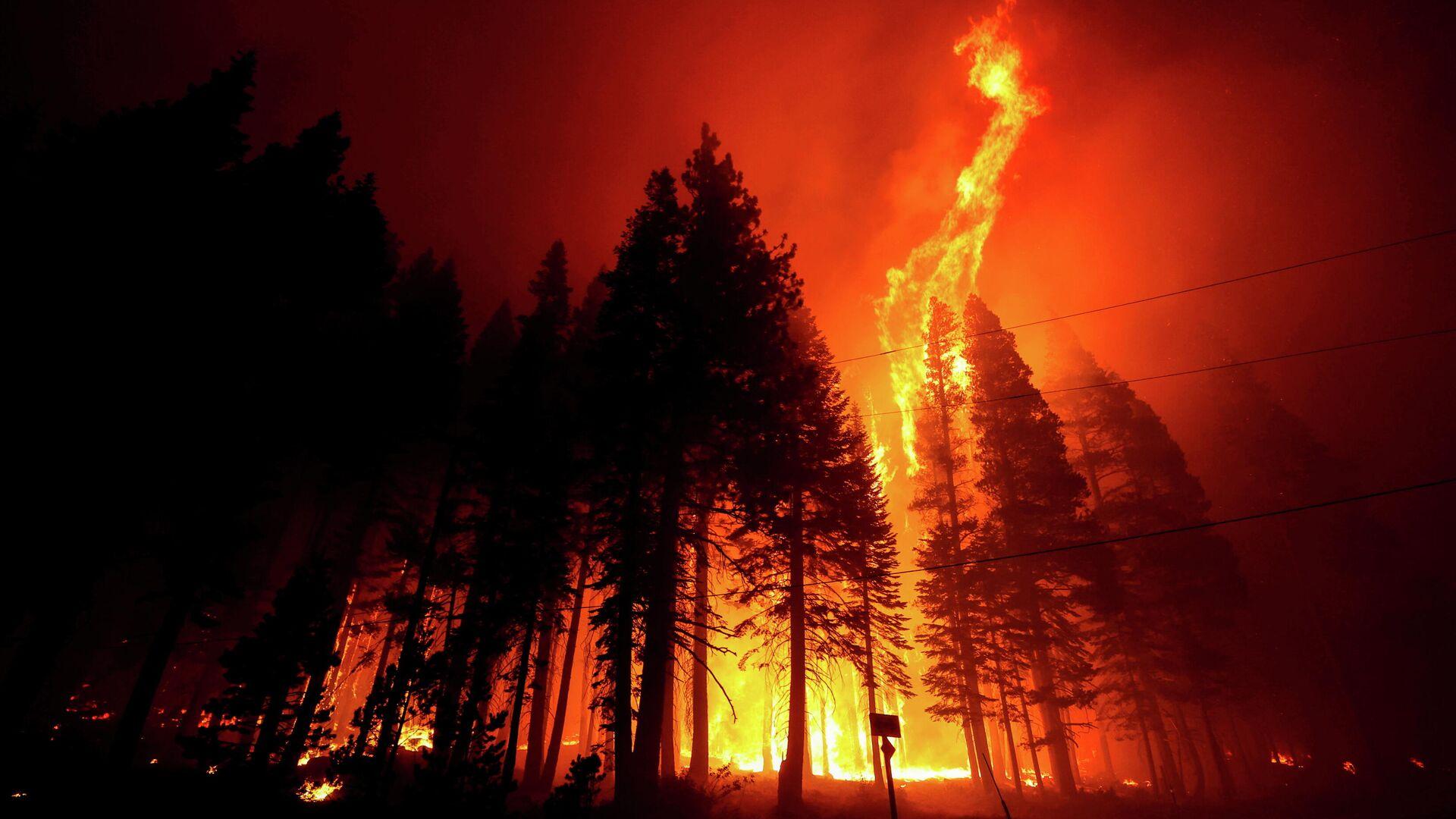 El incendio Caldor en California - Sputnik Mundo, 1920, 13.09.2021