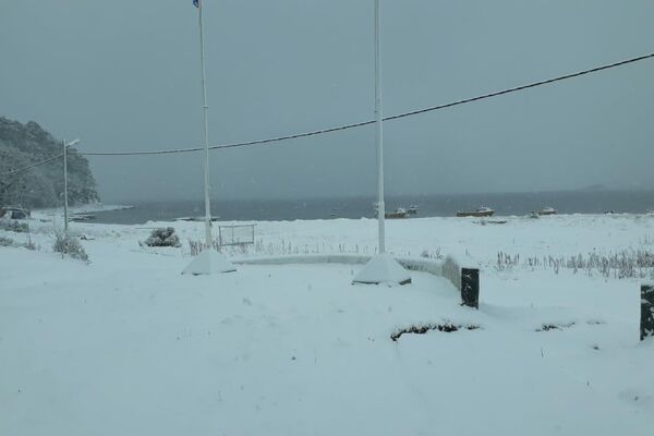 Puerto Almanza, en el extremo sur de Tierra del Fuego - Sputnik Mundo