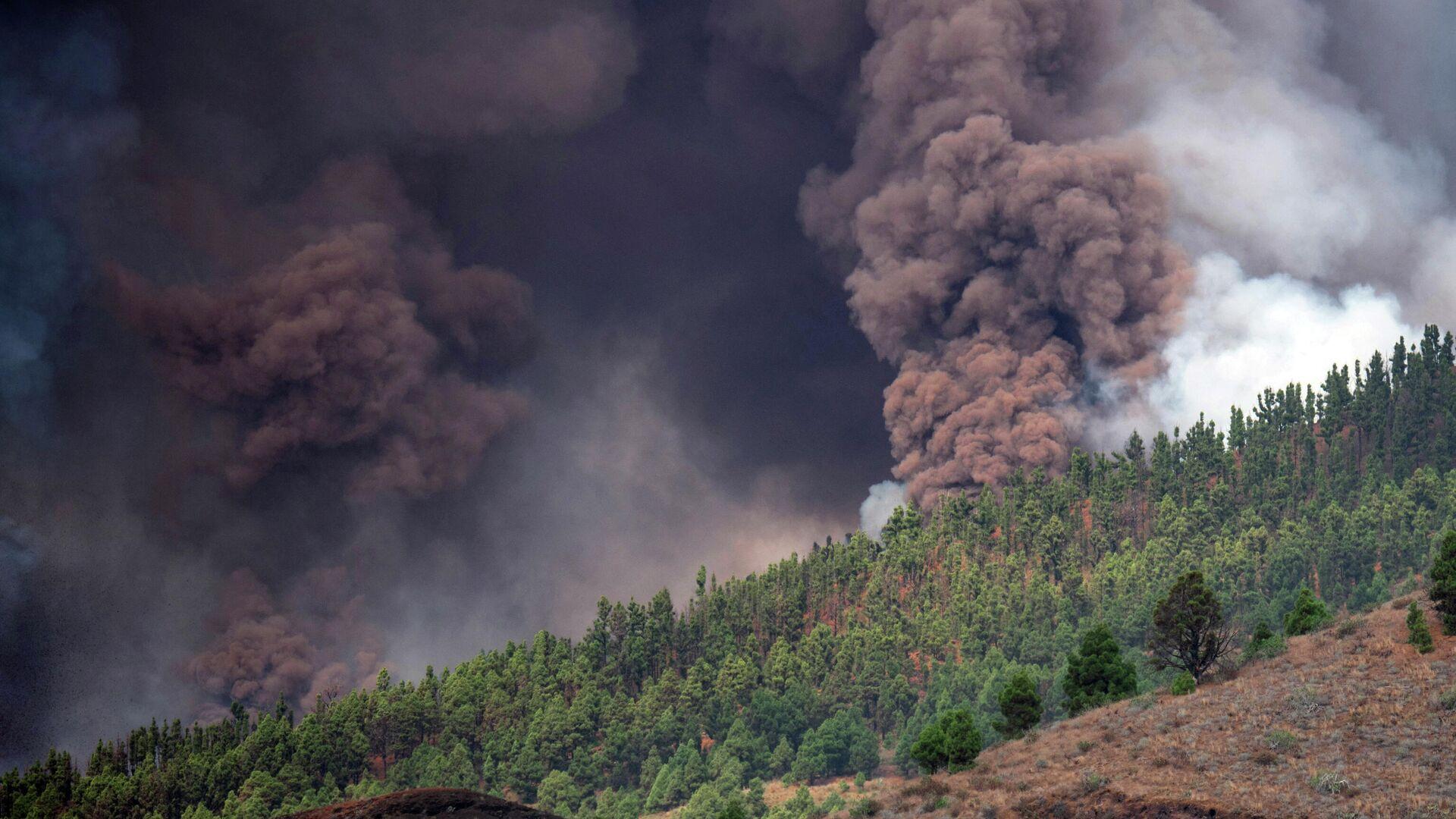 Humo provocado por el paso de la lava del volcán en La Palma, España - Sputnik Mundo, 1920, 19.09.2021