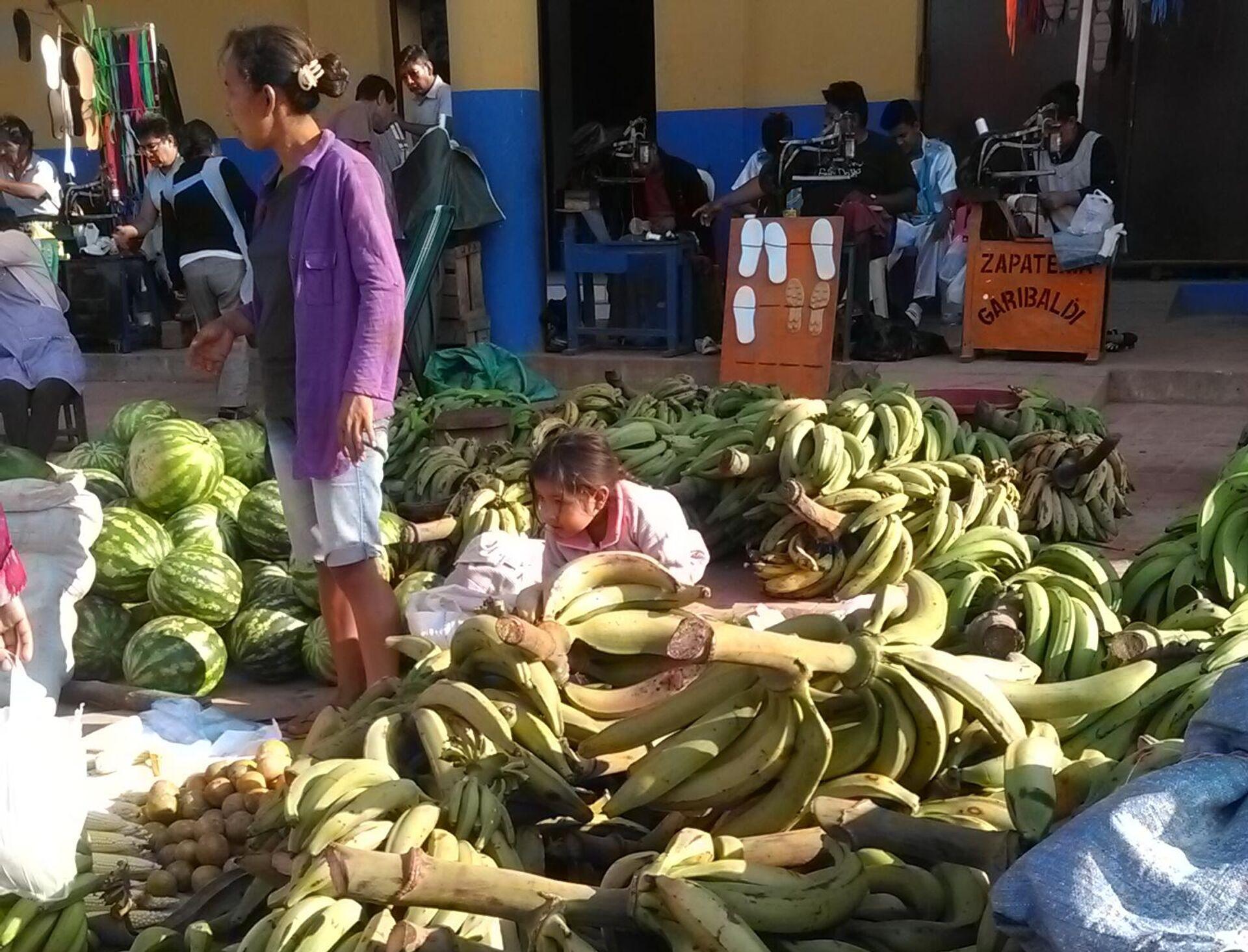 Agricultura familiar campesina en Bolivia - Sputnik Mundo, 1920, 24.09.2021