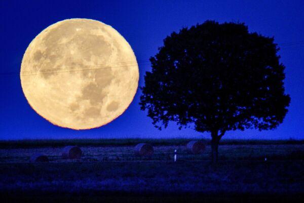 Así se observó la Luna llena en las afueras de Wehrheim, Alemania. - Sputnik Mundo