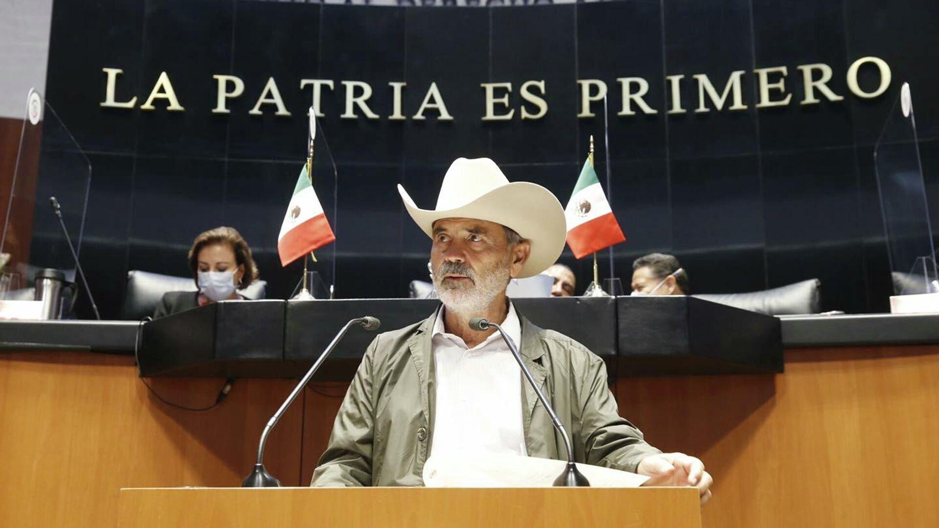 Gustavo Madero, senador del PAN - Sputnik Mundo, 1920, 27.09.2021