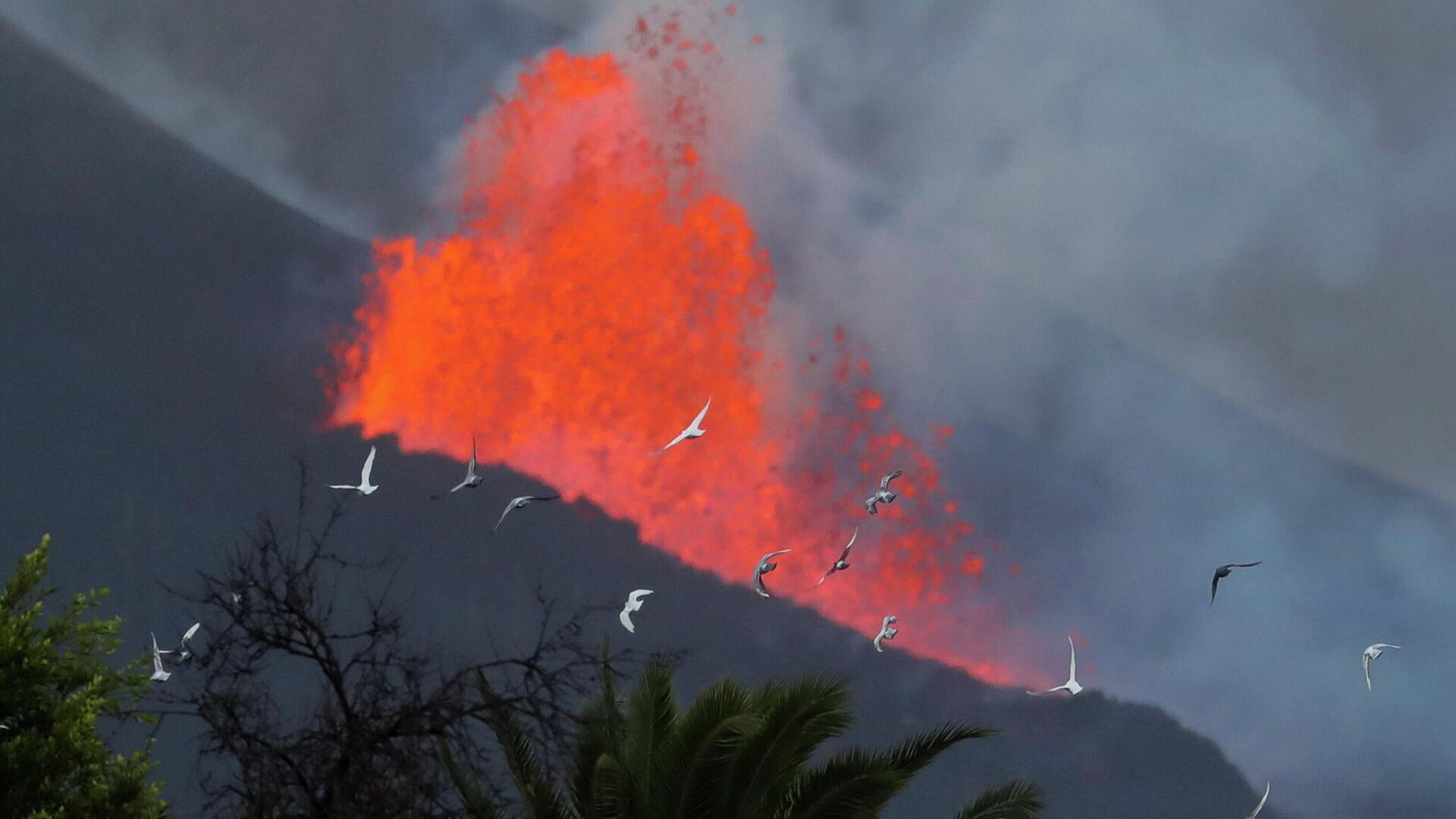 La lava sale expulsada del volcán de Cumbre Vieja (La Palma) - Sputnik Mundo, 1920, 28.09.2021