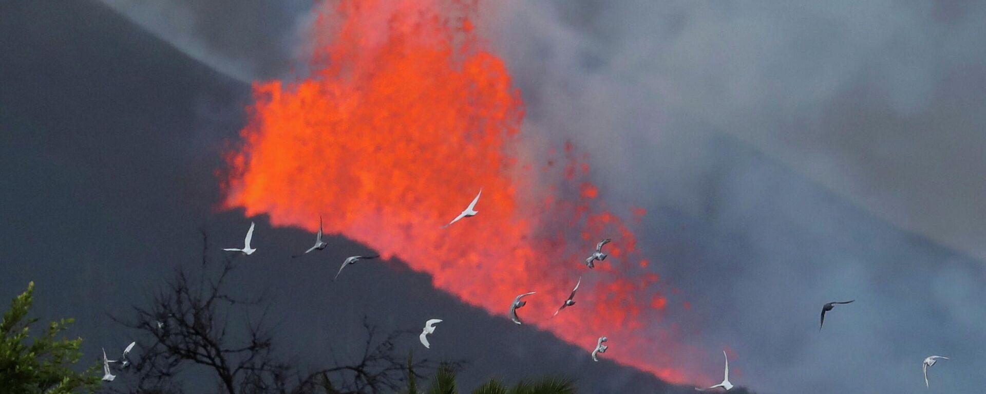 La lava sale expulsada del volcán de Cumbre Vieja (La Palma) - Sputnik Mundo, 1920, 11.10.2021