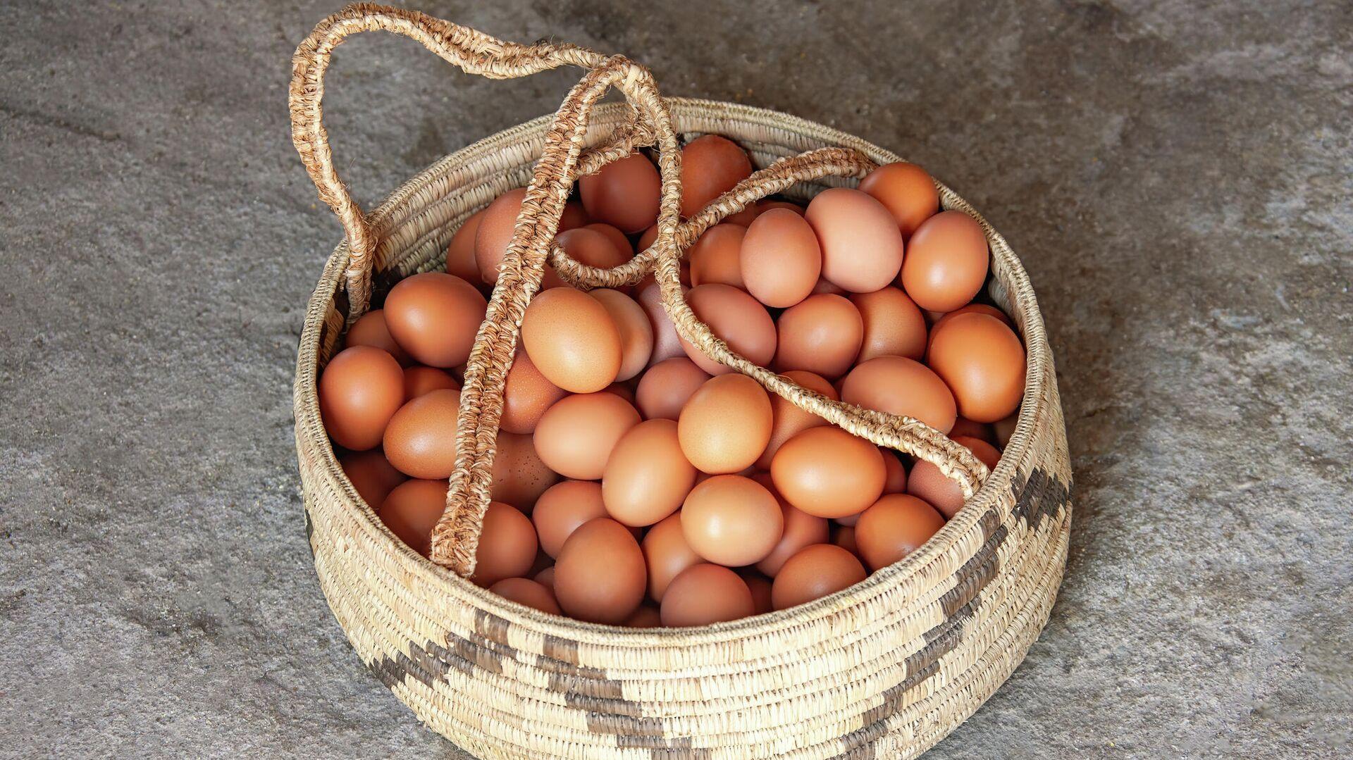 Canasta de huevos - Sputnik Mundo, 1920, 08.10.2021