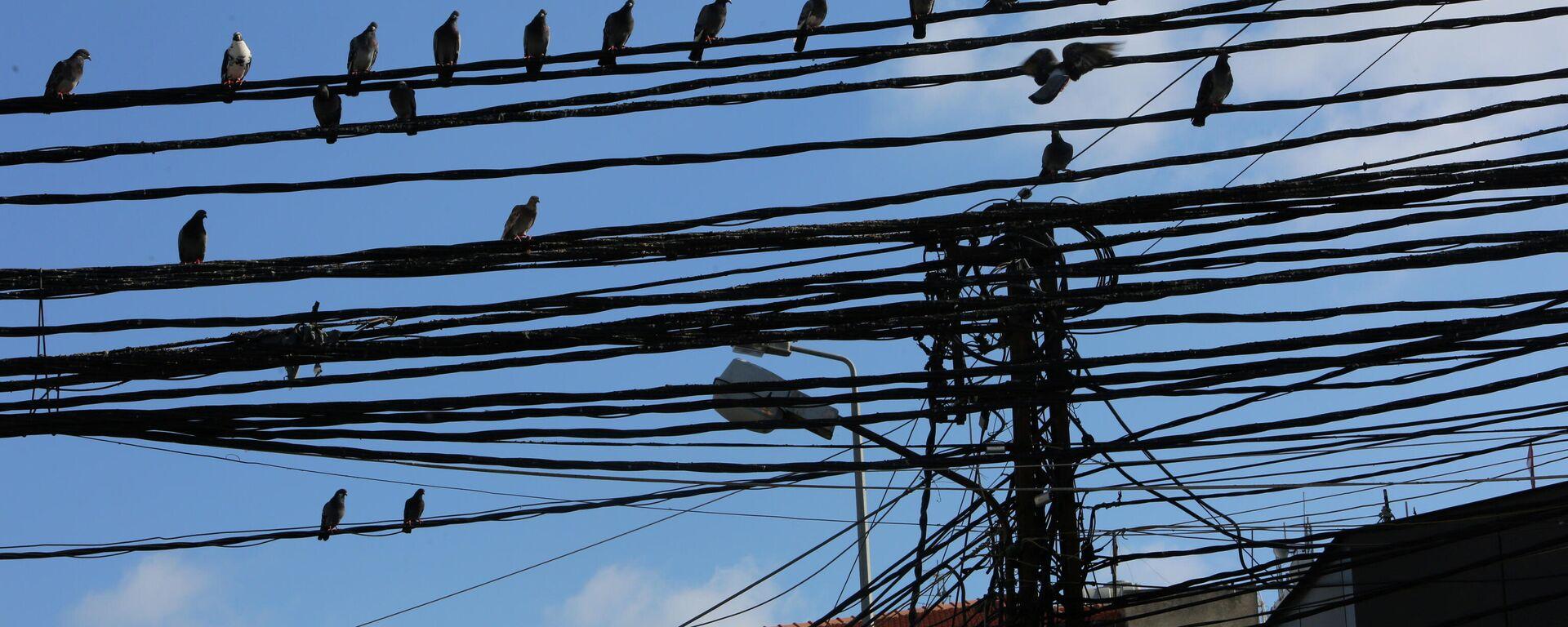 Cables eléctricos en el Líbano - Sputnik Mundo, 1920, 10.10.2021
