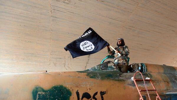Grupos afines al Estado Islámico aumentan su presencia cerca de la frontera con Israel - Sputnik Mundo