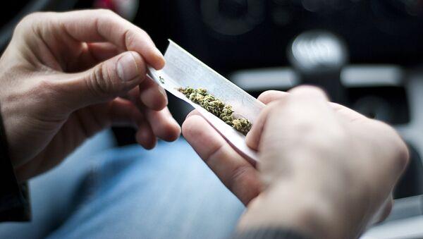 Un brasileño crea una app para saber quien fuma marihuana en los alrededores - Sputnik Mundo