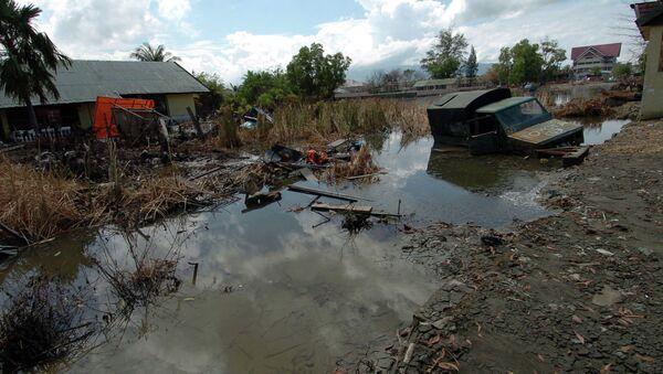 Se cumplen diez años del tsunami que asoló el sureste asiático - Sputnik Mundo