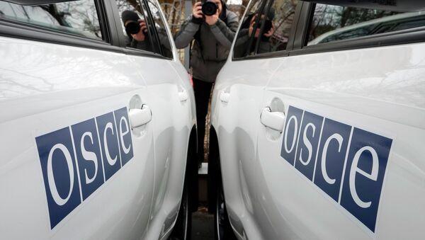 Misión de la OSCE niega que algunos países hayan retirado sus observadores de Ucrania - Sputnik Mundo