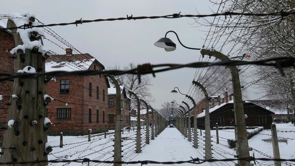 А general view of the former Nazi German concentration and extermination camp Auschwitz in Oswiecim January 26, 2015. - Sputnik Mundo