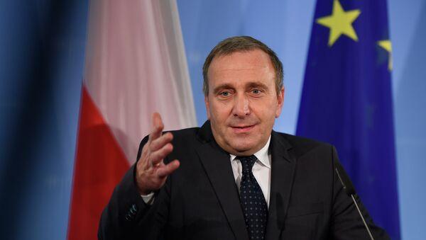 Grzegorz Schetyna, exministro de Exteriores de Polonia - Sputnik Mundo